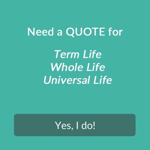 Individual Life Insurance Quotes Inspiration Individual Life Insurance  Benefit Concepts